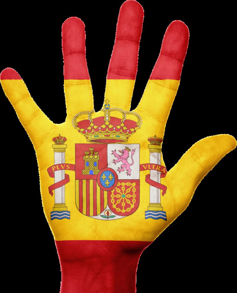 LEY EN MATERIA DE CONCESIÓN DE NACIONALIDAD ESPAÑOLA: NIETOS DE ESPAÑOLES